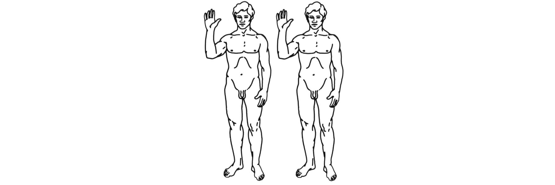 Human clones graphic